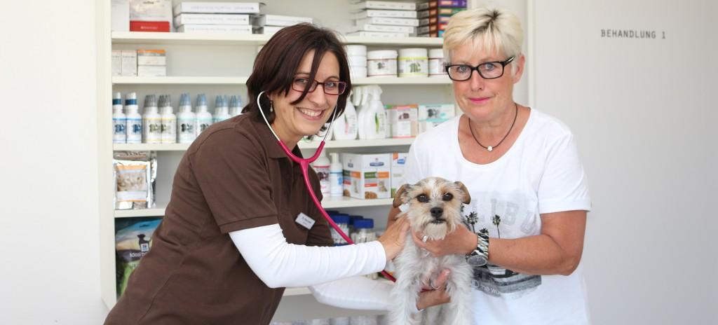 Dr. Klara Seidl | Tierarzt Traunstein